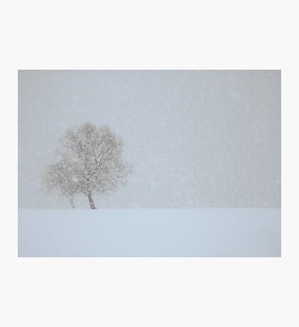 Winter seaside Photographic Print