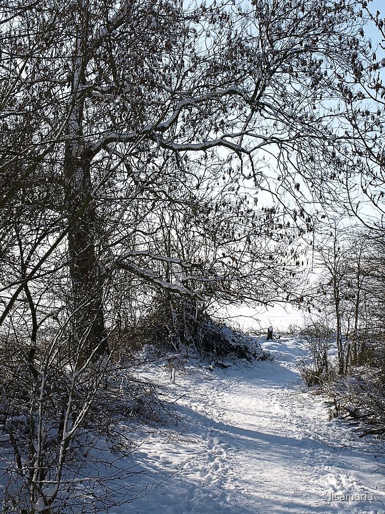 Snow Scene 1 by lisamaria