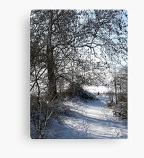 Snow Scene 1 Canvas Print
