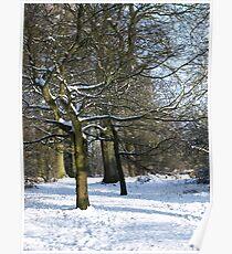 Snow Scene 2 Poster