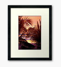 Palm Patterns Framed Print