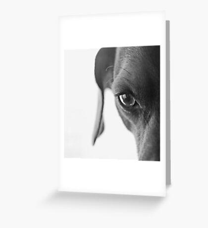 animal instinct Greeting Card
