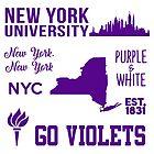 New York University by hcohen2000