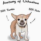 «Anatomía de Chihuahua» de DanielDesigns
