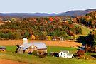 Rose Valley Farm & Long October Shadows by Gene Walls
