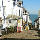 Clovelly, North Devon. UK by hans p olsen