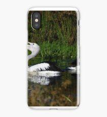 Australian Pelican (Pelecanus conspicillatus) 3 iPhone Case/Skin