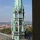 View of Prague From Above The City by Darryl Green