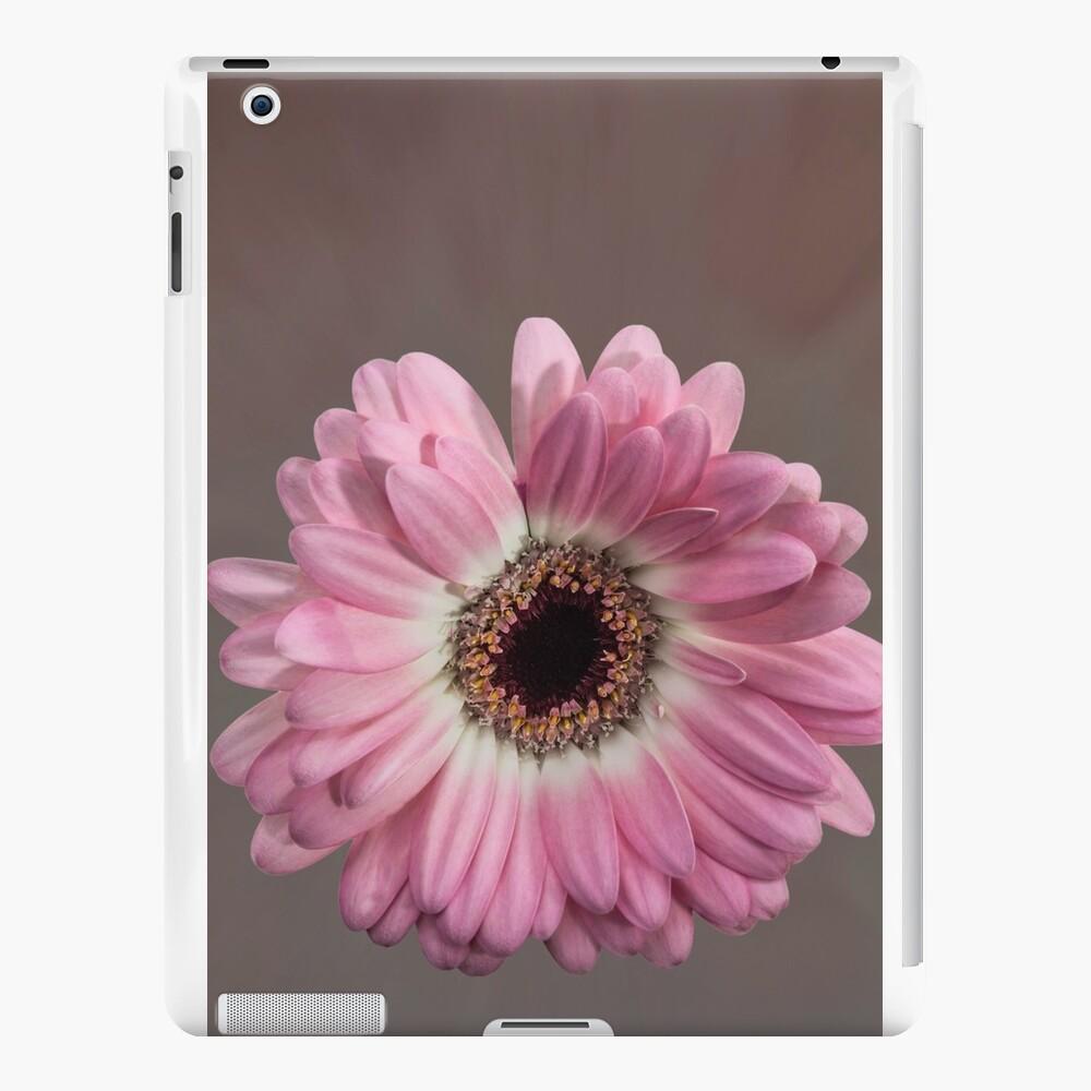Single pink Gerbera Flower iPad Cases & Skins
