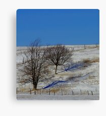 Blue Shadow - Blue Shadow Canvas Print