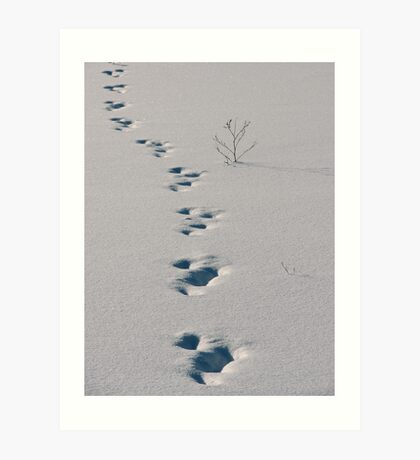 On The Right Track... Art Print
