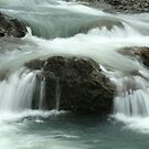 Falls On The Calapooia River by CarrieAnn
