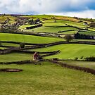 image of rolling green hills by therightprofile