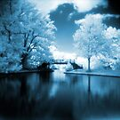 Blue Infrared Park by Paul Lavallee