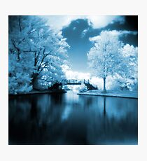 Blue Infrared Park Photographic Print