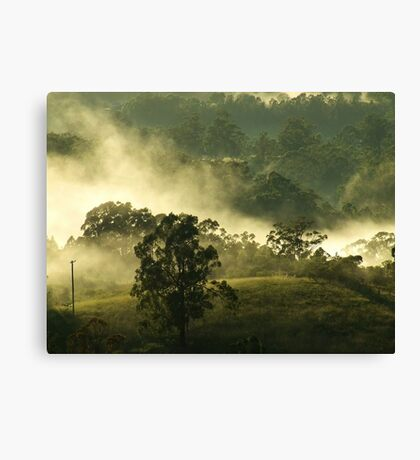 """""""Touched by Dawn"""" Canvas Print"""
