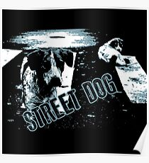 Street dogs Poster
