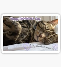 Cute Sleeping Tabby Mother's Day Card Sticker