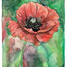 Poppy by Meaghan Roberts