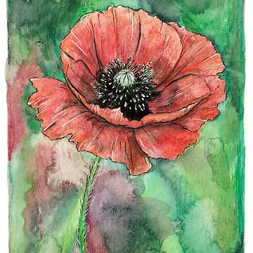 Poppy by MeaghanR