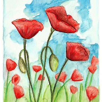 Poppies by MeaghanR