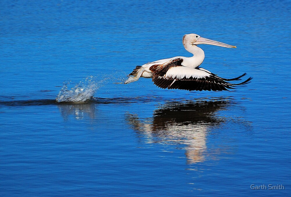 We have liftoff!!! by Garth Smith