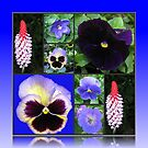 Blue of Summer - Flower Collage von BlueMoonRose