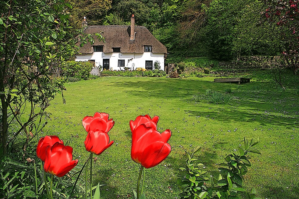 Cottage Garden by RedHillDigital