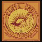 Santa Cruz California Surfing by Larry Butterworth