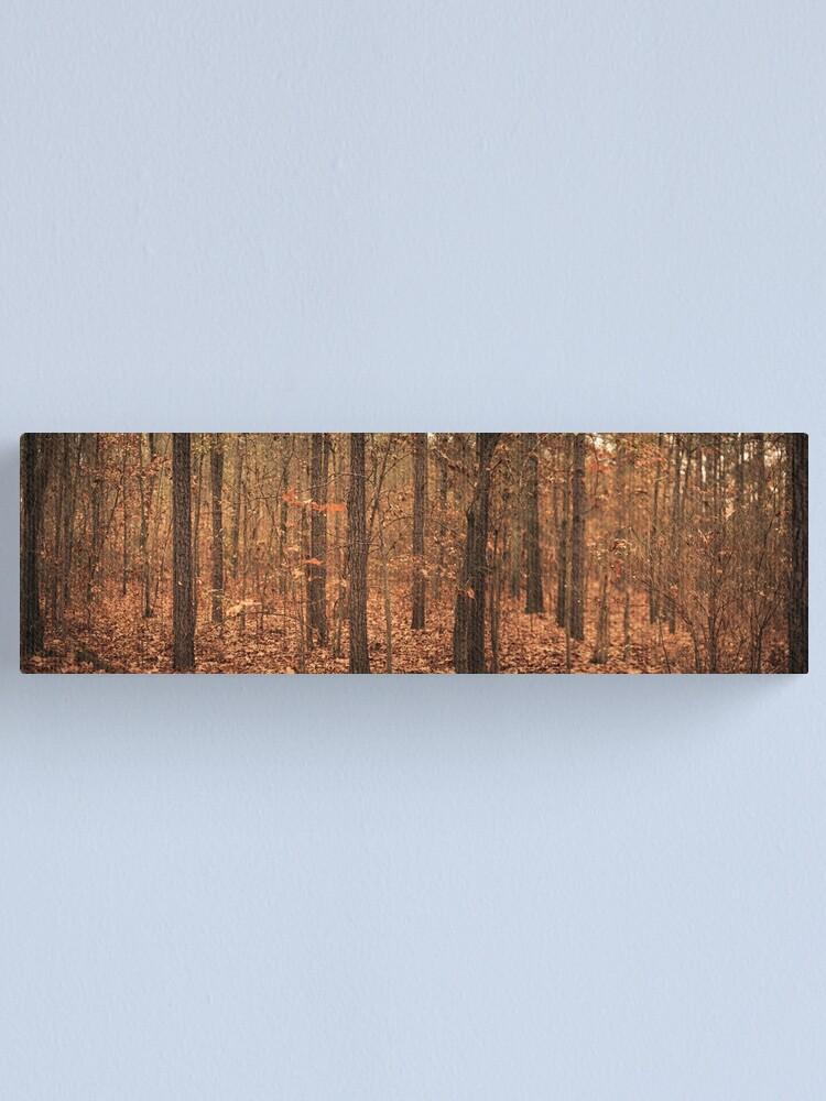 Alternate view of Woods of North Carolina Canvas Print