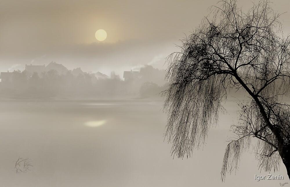 Mist by Igor Zenin