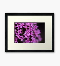 Small Pink Flower Framed Print