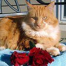 Me a Valentine!!!! by Lori Durocher