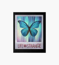 Life is Strange Butterfly Photo Art Board