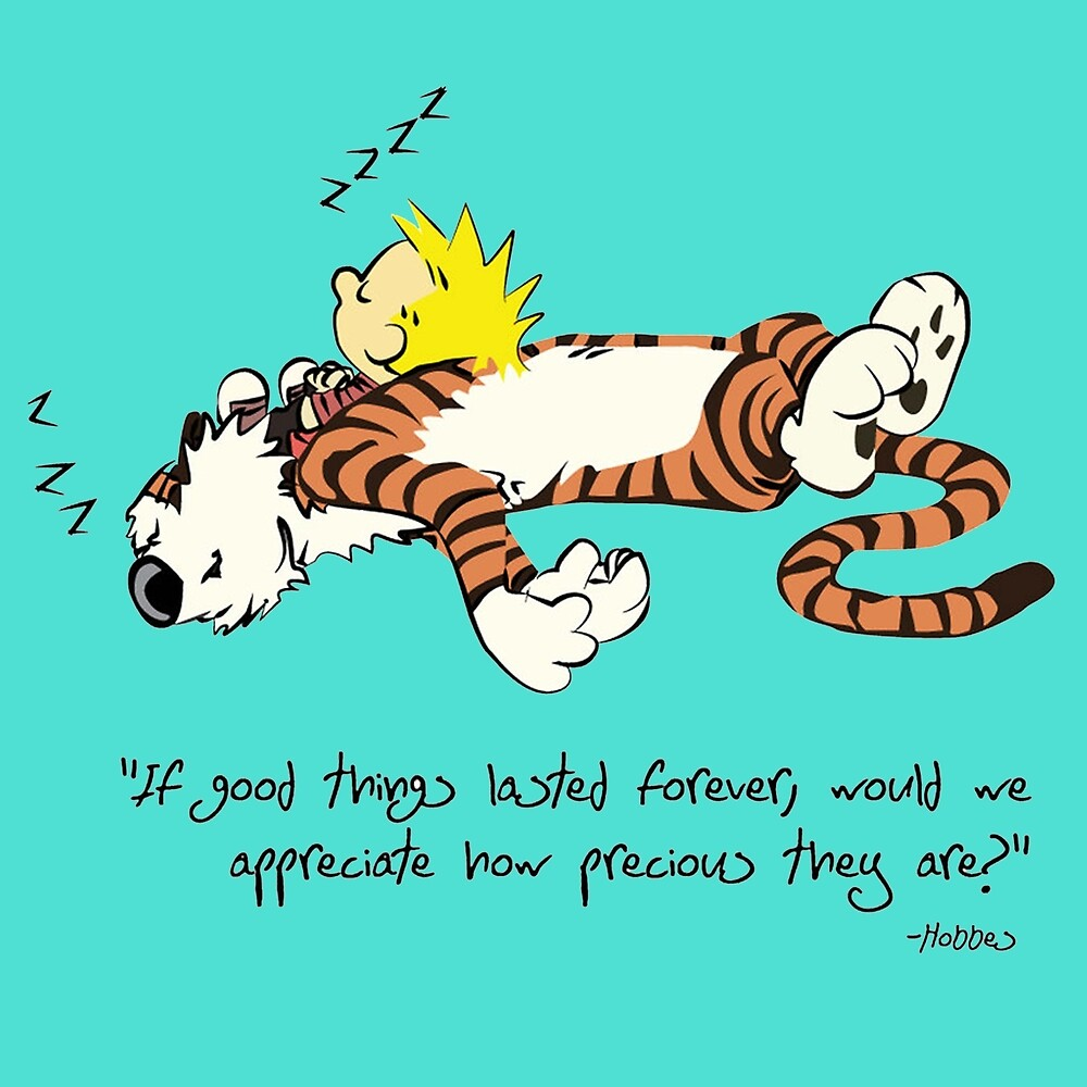 Citas de Calvin y Hobbes» de cboycool   Redbubble