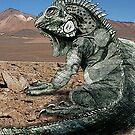 Desert Iguana Justin Beck Picture 2015096 by Justin Beck