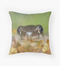 Peron's Tree Froglet Throw Pillow