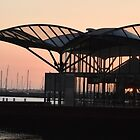 Sunrise Geelong Waterfront by forgantly