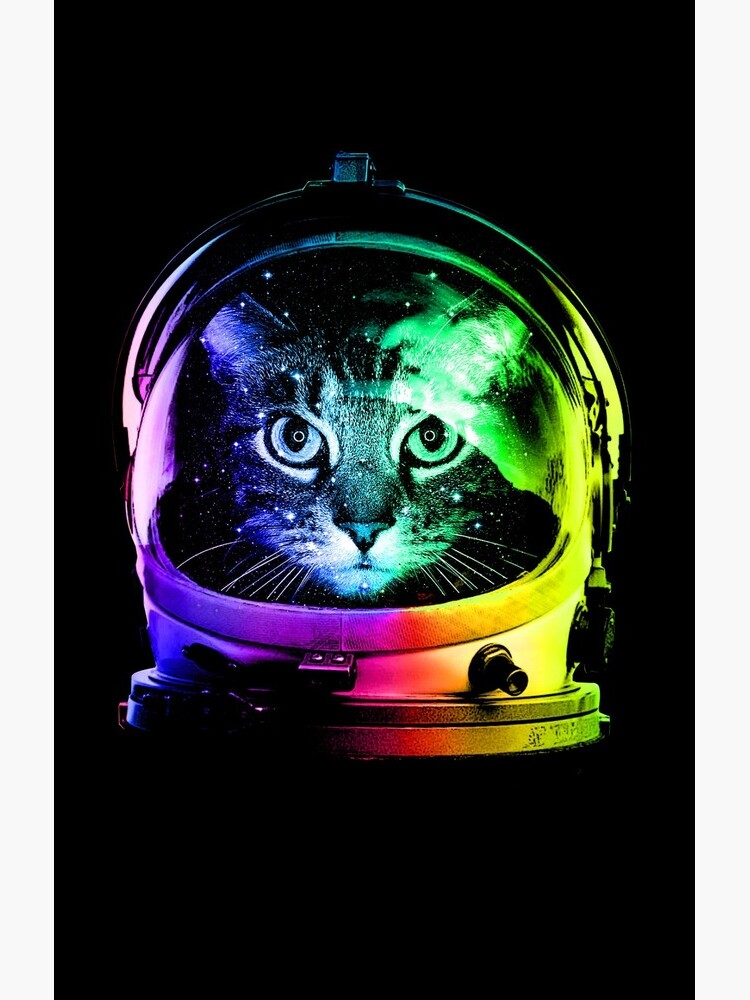 Astronauta Cat de clingcling