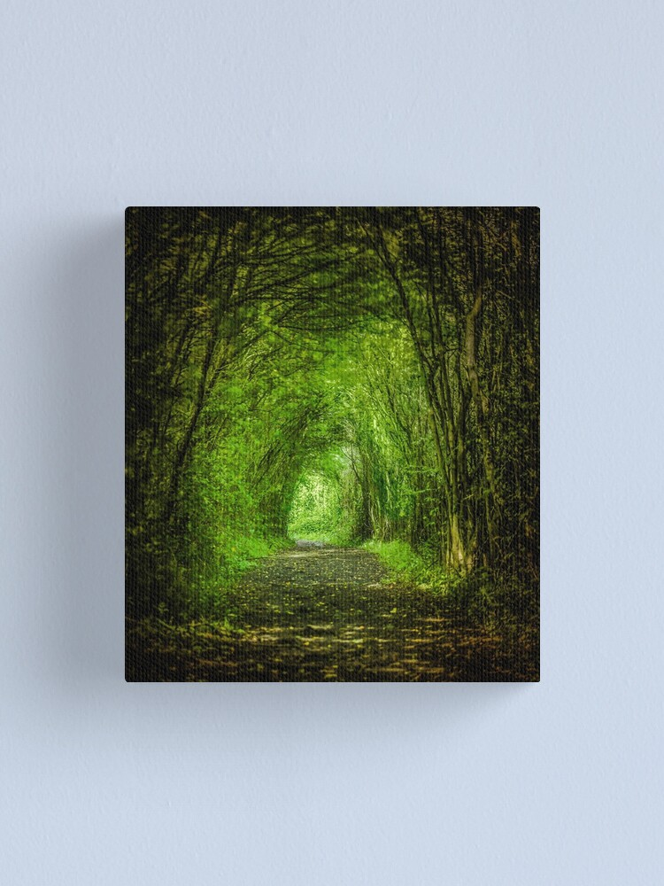 Alternate view of Natures trail Canvas Print