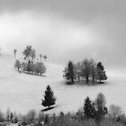 Snowy Hills ... Black Forest by Angelika  Vogel
