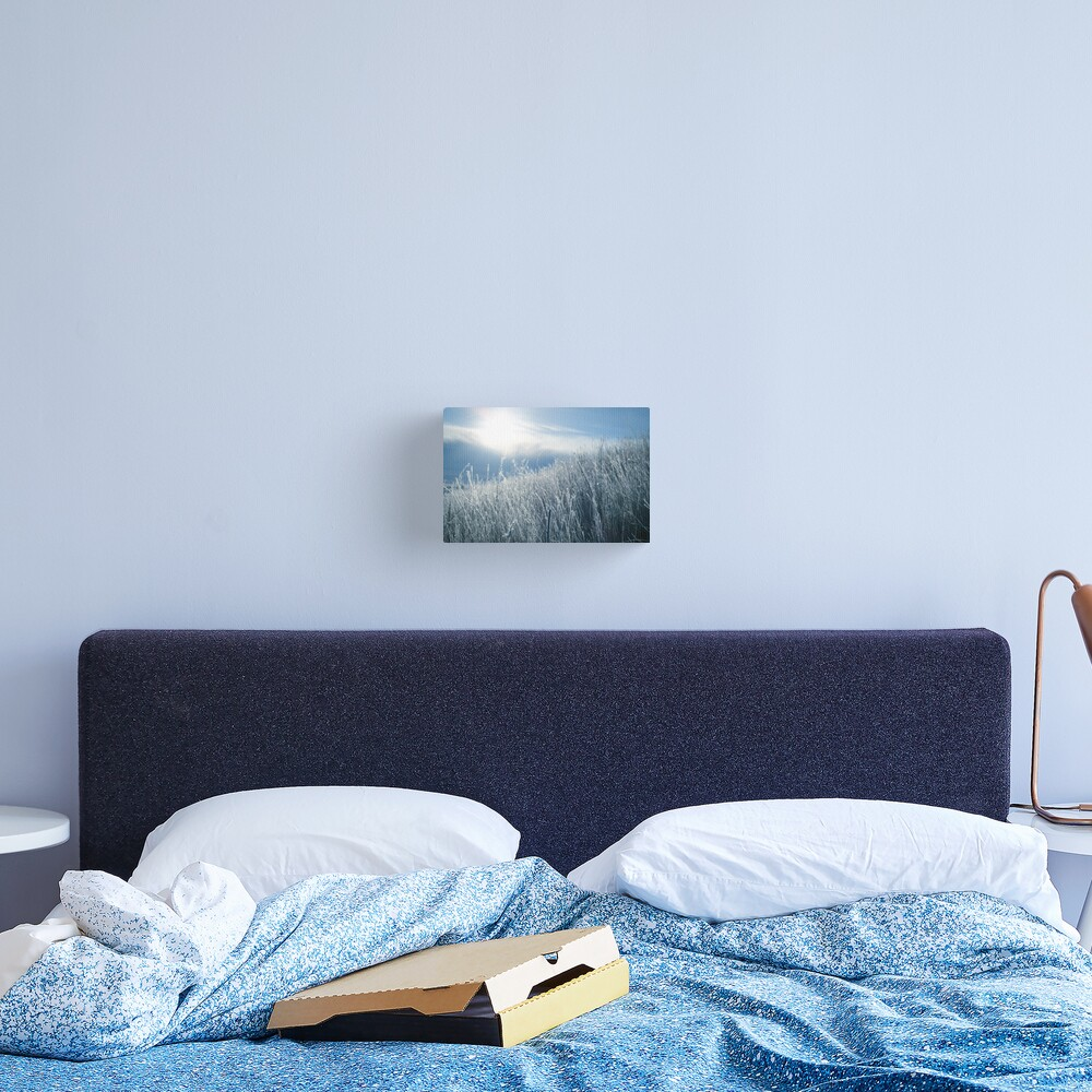 Montana in the mornings Canvas Print