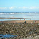 Westward-Ho Beach, Devon, England by trish725