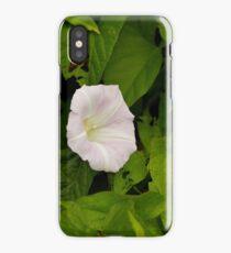 Sea Bindweed, Muckross Head, Donegal iPhone Case