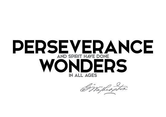 perseverance done wonders - george washington by razvandrc