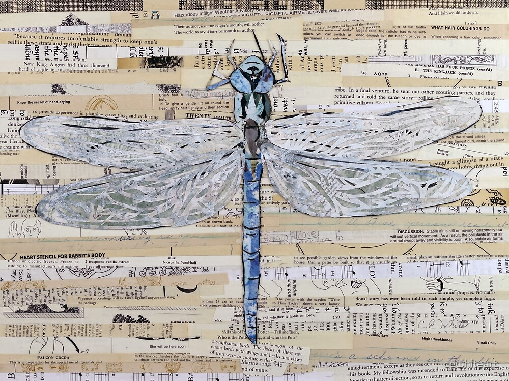 Blue Dragonfly Collage by C.E. White by cewhiteart