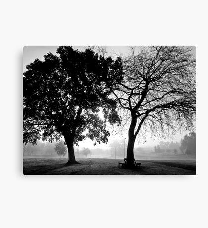 foggy duo Canvas Print