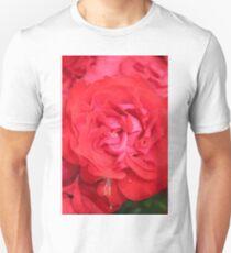 red rose flower close up Unisex T-Shirt