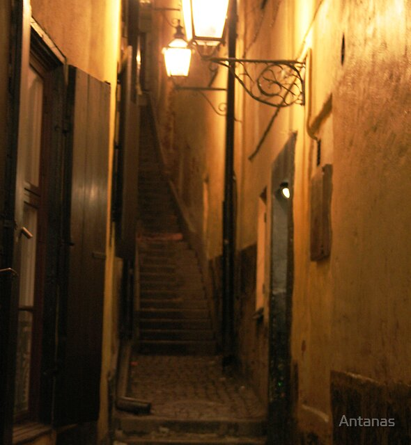 Street at Night by Antanas