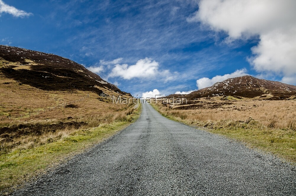 Along the Mountain road by Martina Fagan